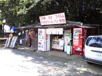 Summer_shop
