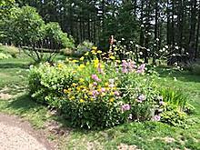 Garden2_2