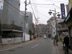 kosugi1
