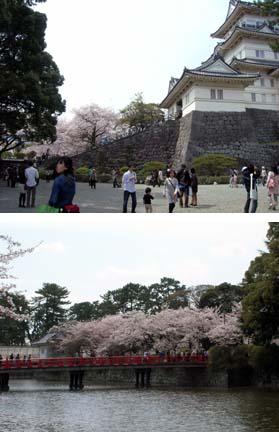 Odawara_castle_2