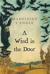 A_wind_in_the_door