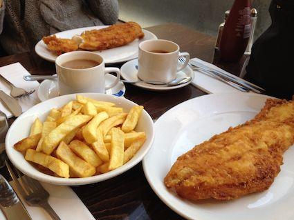 Fish_tips