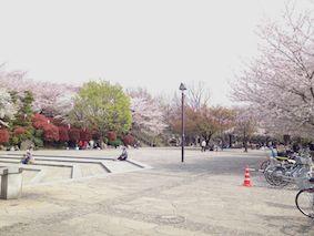 Asukayama2