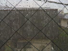 Rainy_season