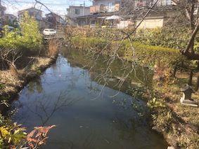 Tsurigane_park4