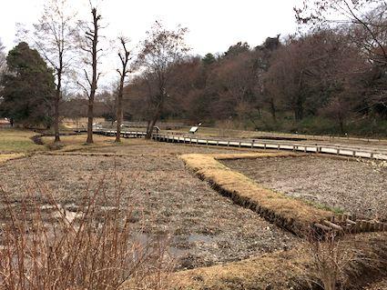Shindai1