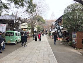 Shindaii
