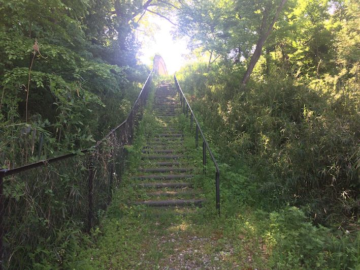 3_steps