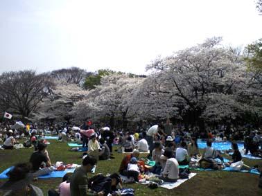Yoyogipark1