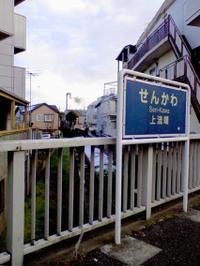 Sengawa1_2