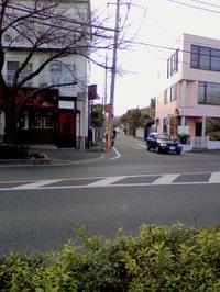 Sengawa2