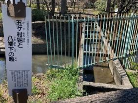 Gokason-bori