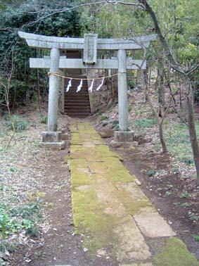 shinyoshida1