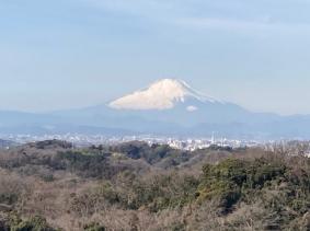 Tenen-fujisan