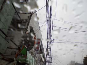 Taifu20