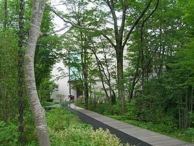 Lalique