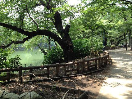 Inokashira_park
