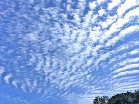 Autumn_cloud