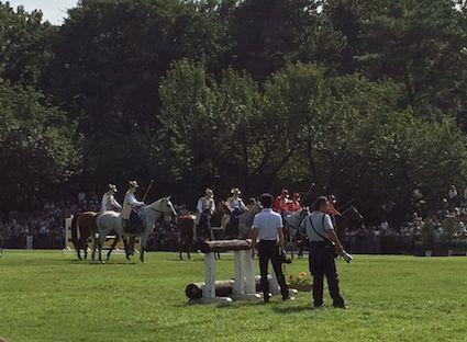 Horse_park