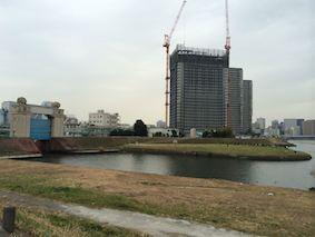 Tamagawa_beri
