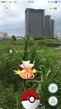 Pokemon_tamagawa2
