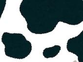 Cow-pattern