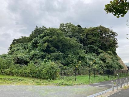Honmoku-12ten-island